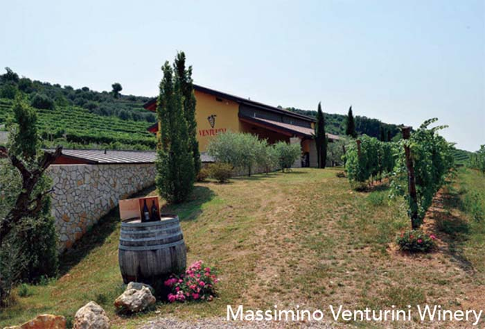 Massimino Venturini Winery