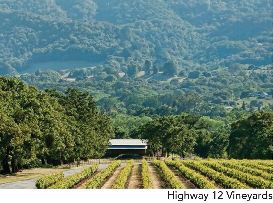 Highway 12 Vineyards